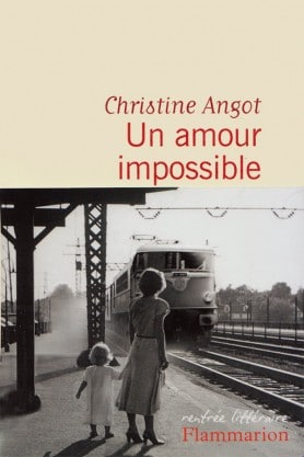 Christine ANGOT, Un amour impossible